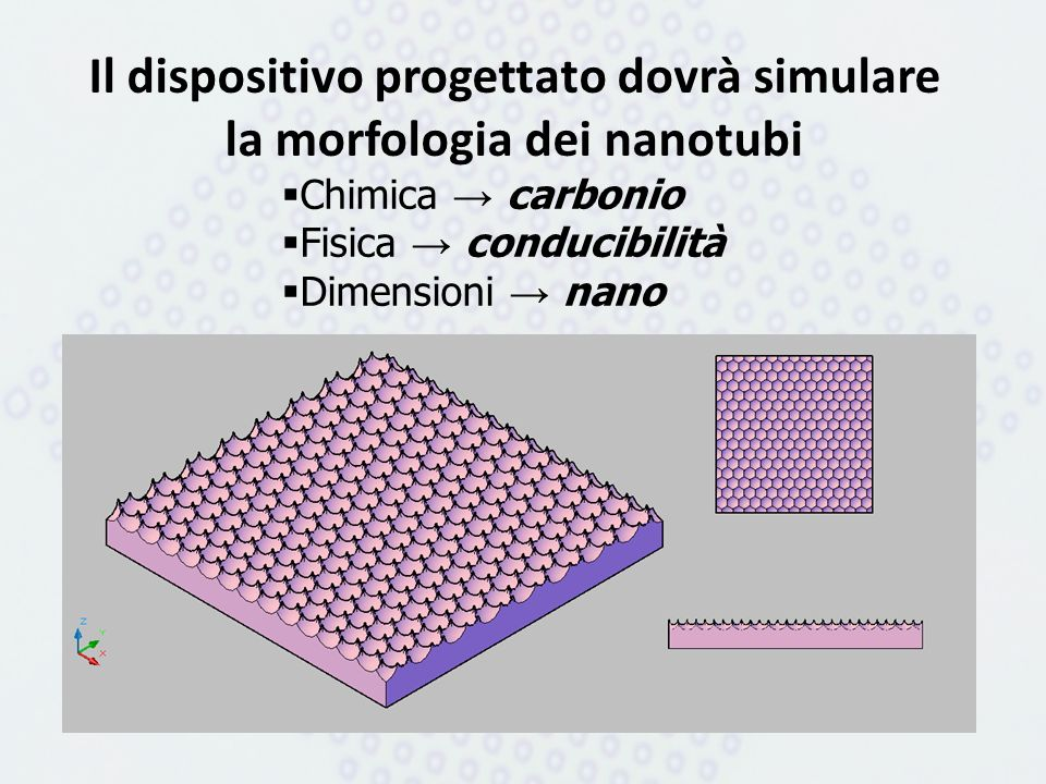 Il dispositivo progettato dovrà simulare la morfologia dei nanotubi