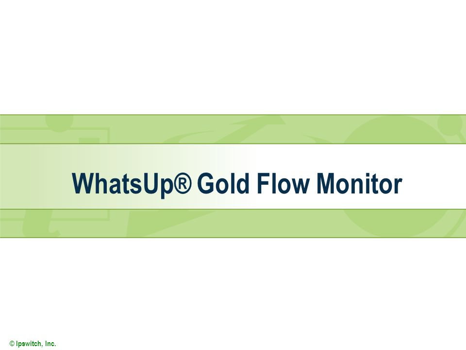 WhatsUp® Gold Flow Monitor
