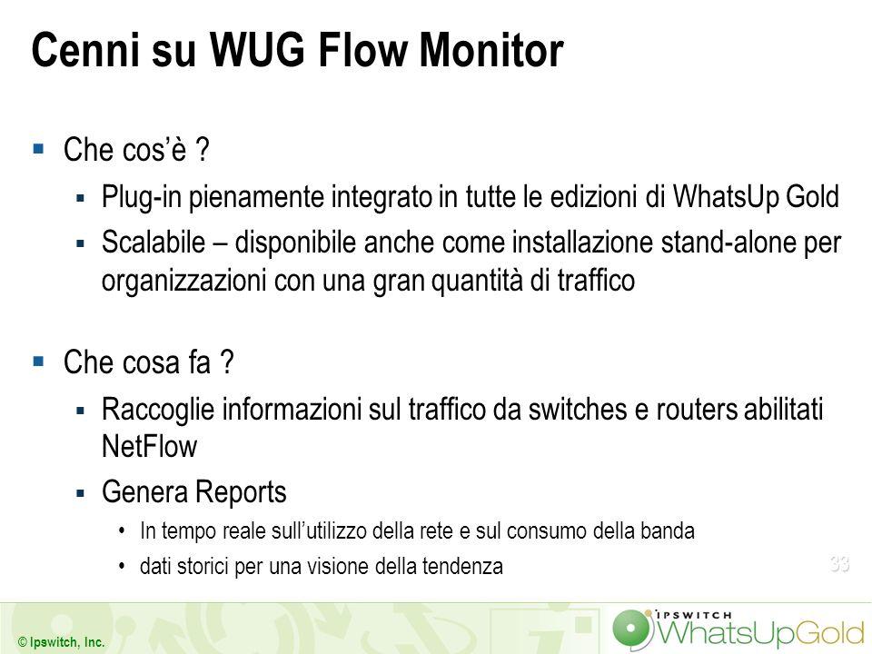 Cenni su WUG Flow Monitor