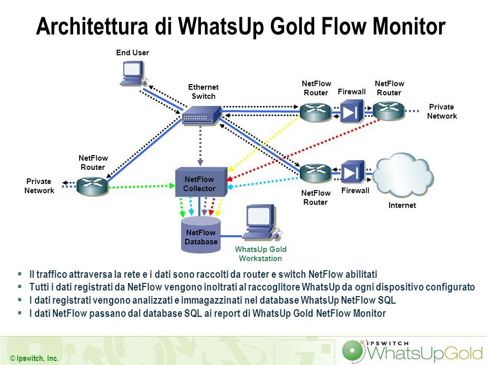 Architettura di WhatsUp Gold Flow Monitor