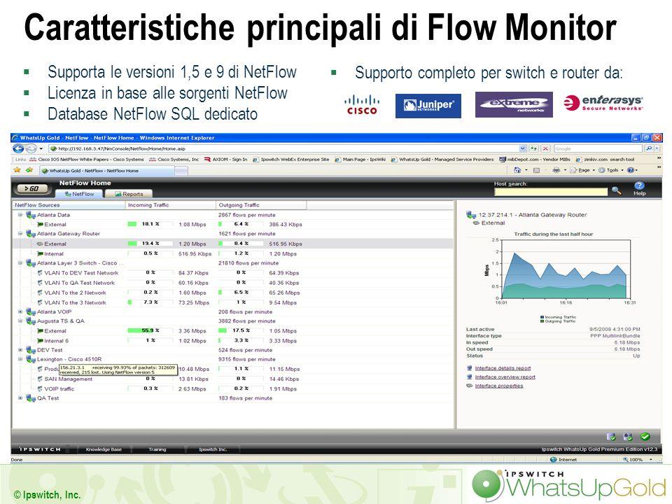 Caratteristiche principali di Flow Monitor
