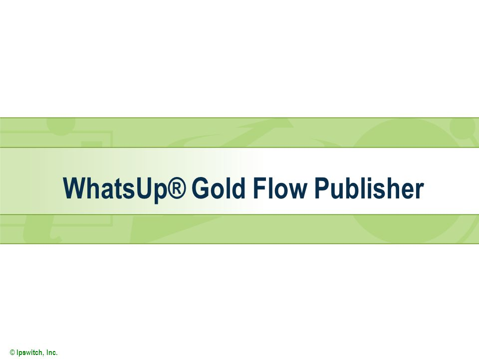 WhatsUp® Gold Flow Publisher