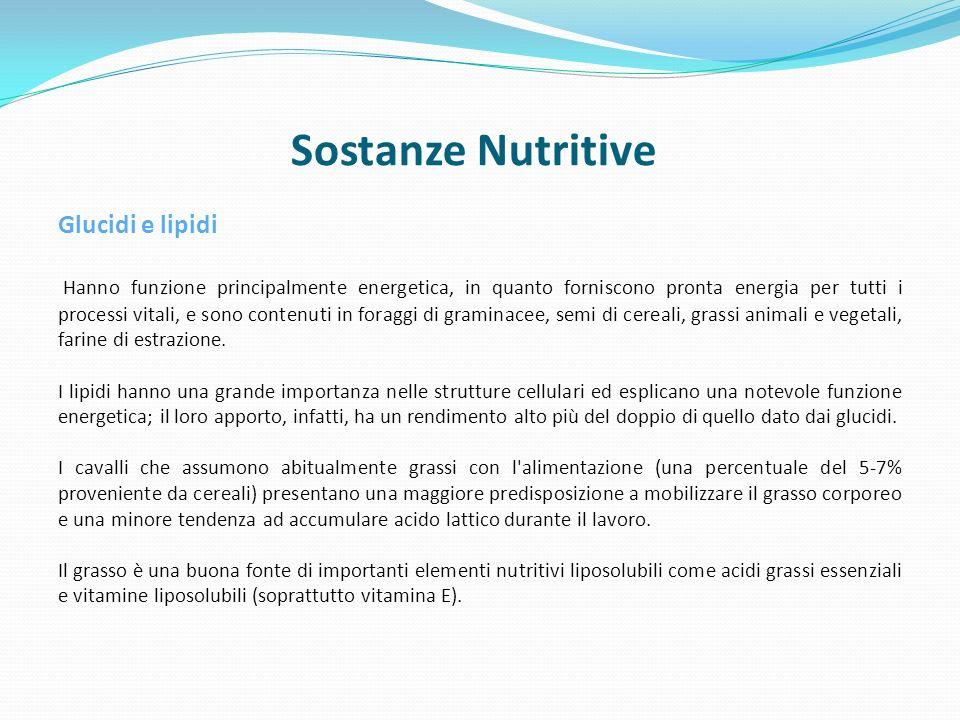 Sostanze Nutritive Glucidi e lipidi
