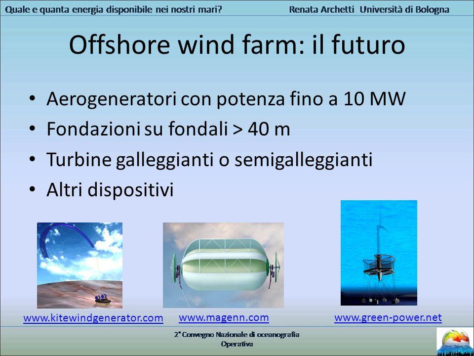Offshore wind farm: il futuro