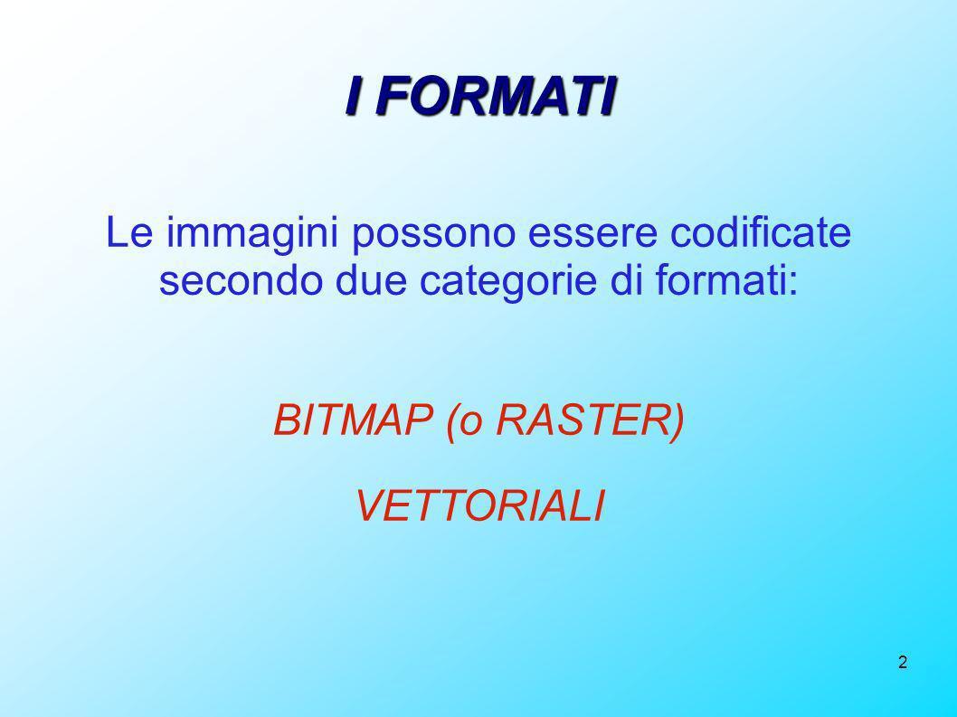 I FORMATI Le immagini possono essere codificate secondo due categorie di formati: BITMAP (o RASTER)