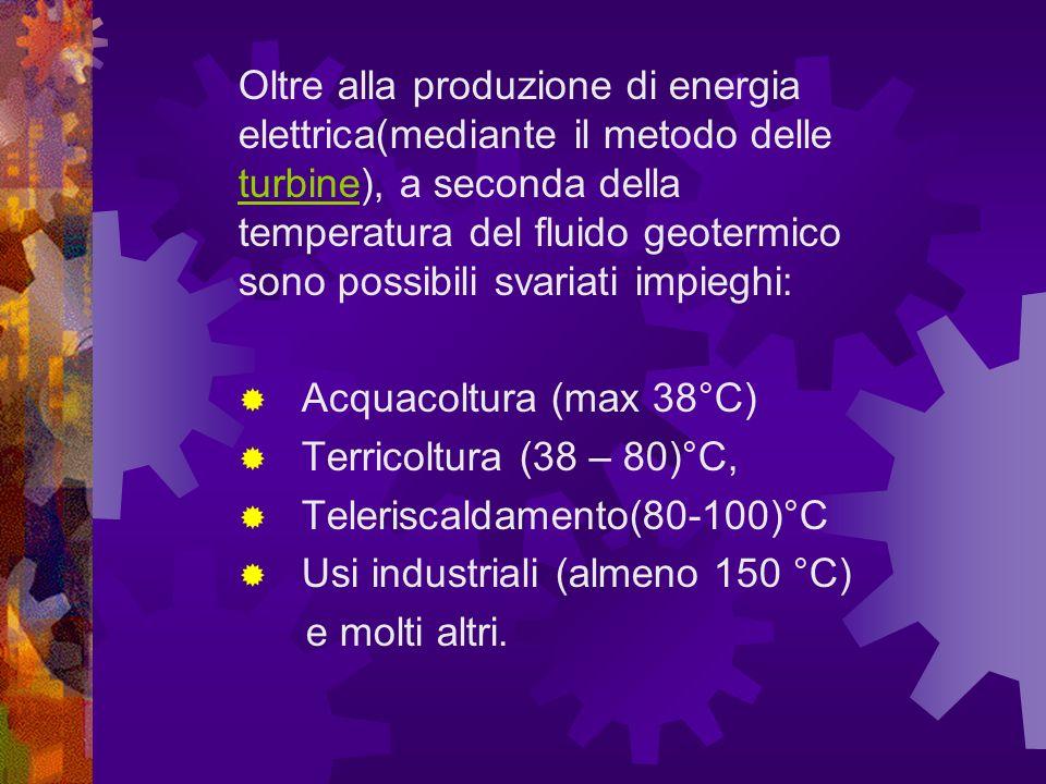 Oltre alla produzione di energia elettrica(mediante il metodo delle turbine), a seconda della temperatura del fluido geotermico sono possibili svariati impieghi: