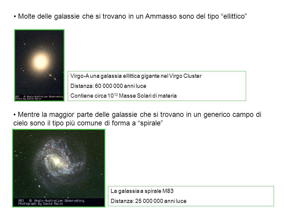 Molte delle galassie che si trovano in un Ammasso sono del tipo ellittico