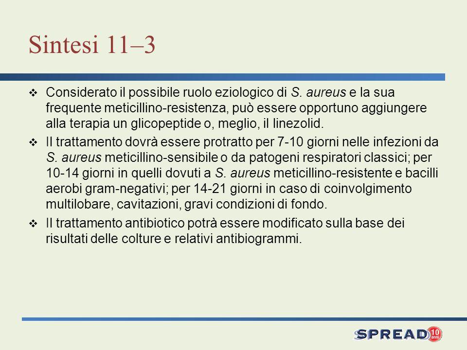 Sintesi 11–3