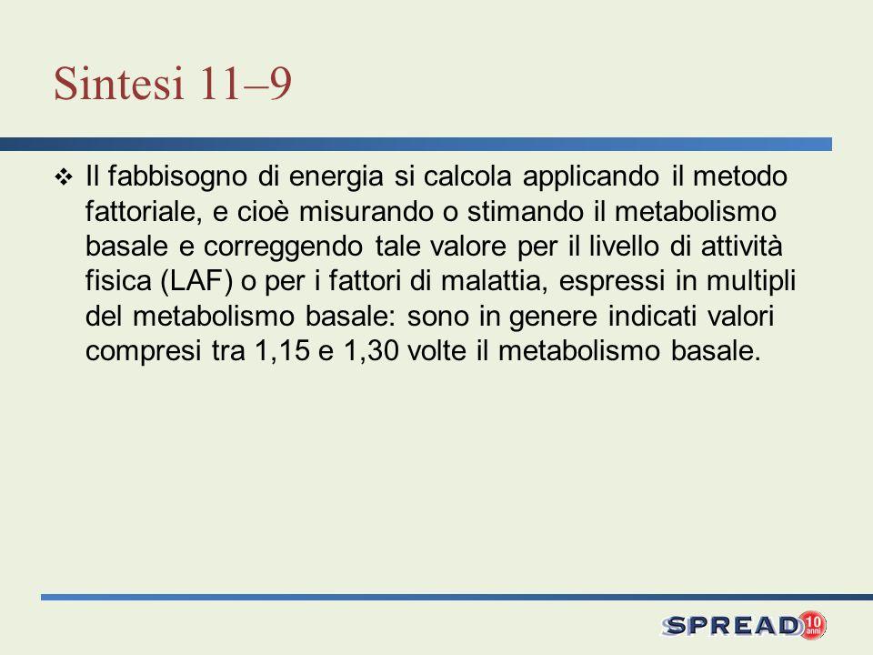 Sintesi 11–9