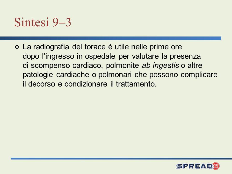 Sintesi 9–3