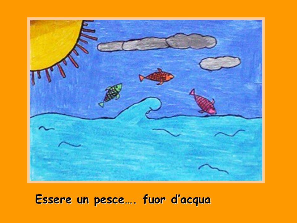 Essere un pesce…. fuor d'acqua