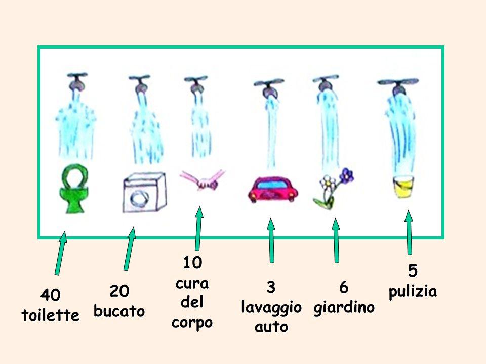 10 cura del corpo 5 pulizia 3 lavaggio auto 6 giardino 20 bucato 40 toilette