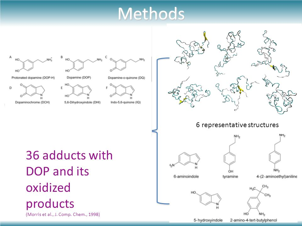 Methods Docking 30 adducts with new ligands +