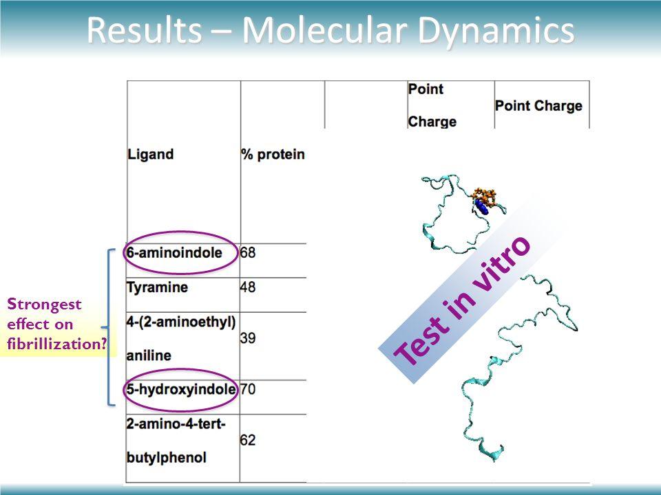 Results – Molecular Dynamics