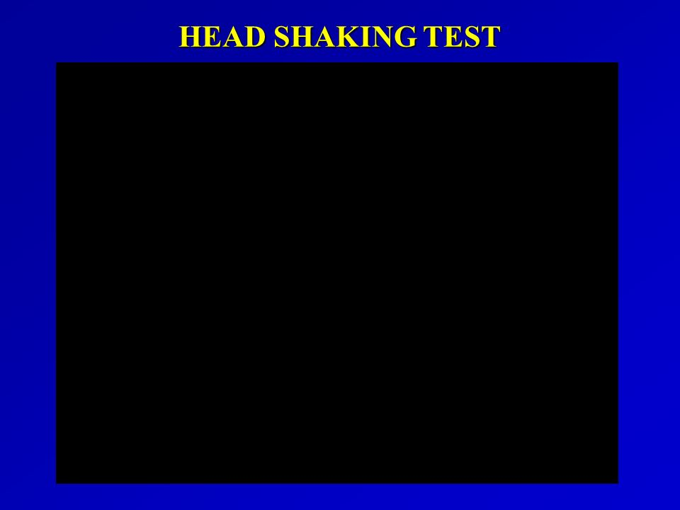 HEAD SHAKING TEST
