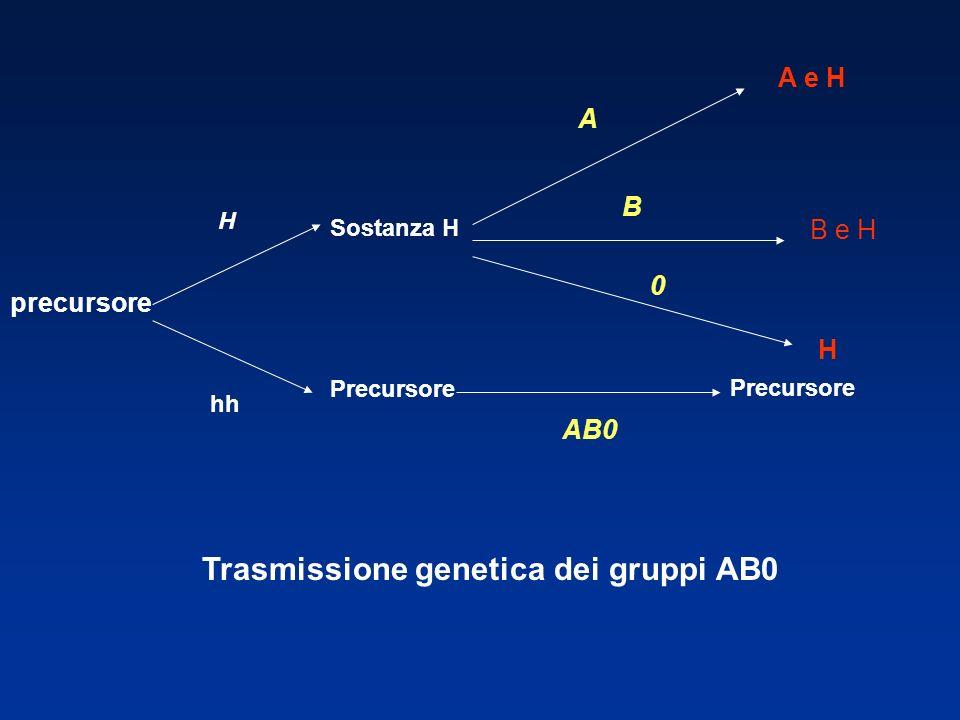 Trasmissione genetica dei gruppi AB0