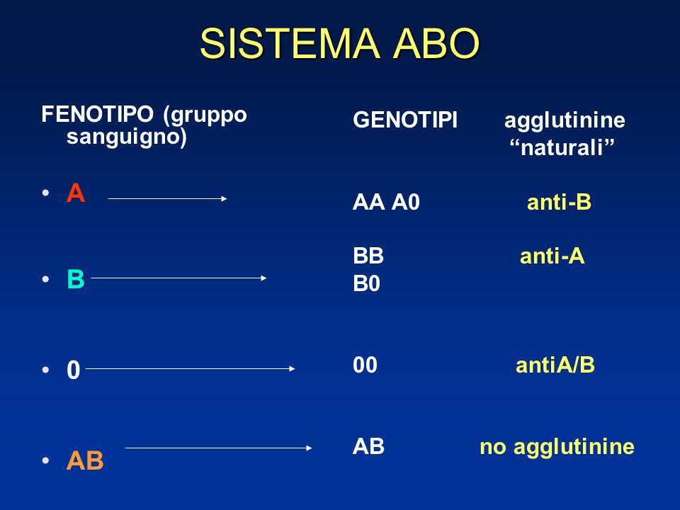 SISTEMA ABO A B AB FENOTIPO (gruppo sanguigno) GENOTIPI agglutinine