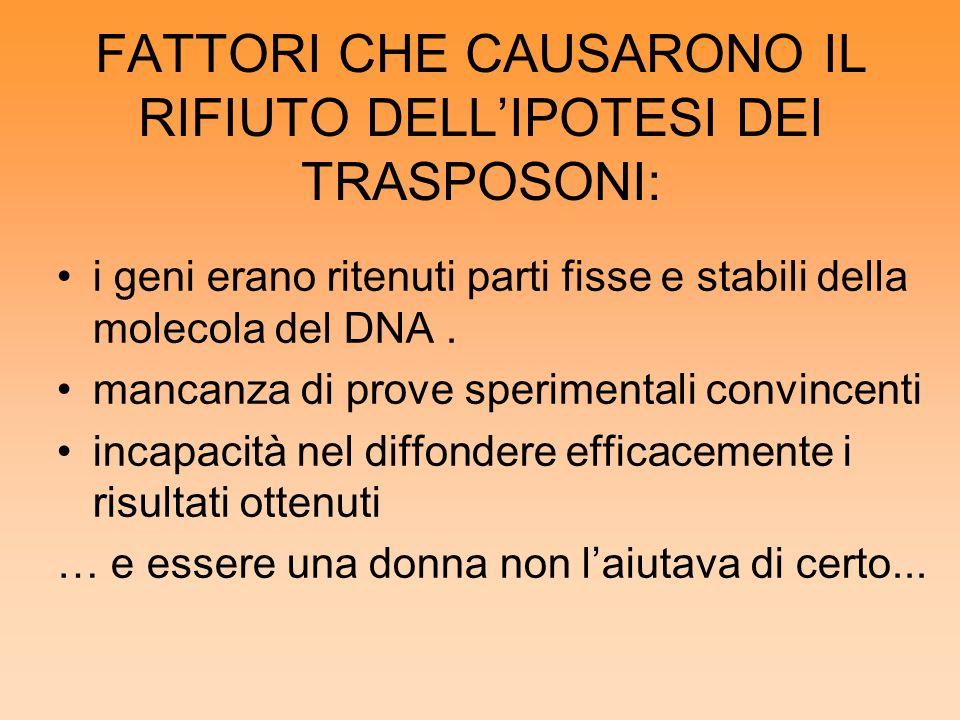 FATTORI CHE CAUSARONO IL RIFIUTO DELL'IPOTESI DEI TRASPOSONI: