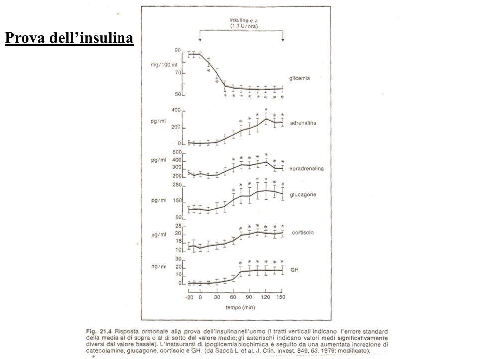Prova dell'insulina