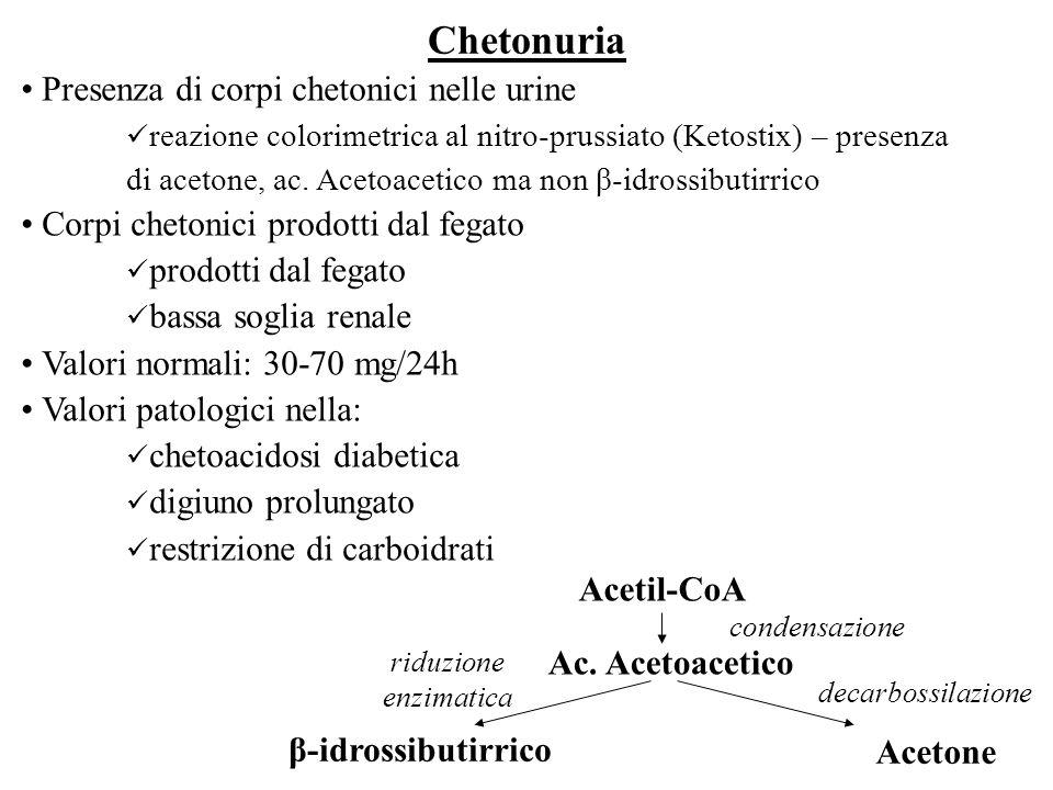 Chetonuria Presenza di corpi chetonici nelle urine