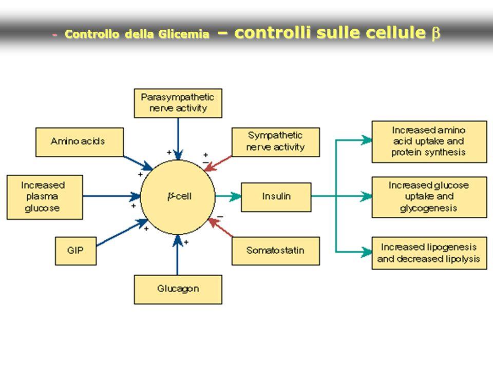 - Controllo della Glicemia – controlli sulle cellule b