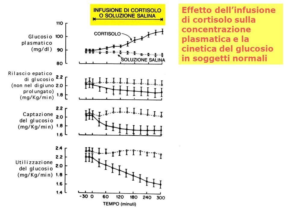 Effetto dell'infusione di cortisolo sulla concentrazione plasmatica e la cinetica del glucosio in soggetti normali