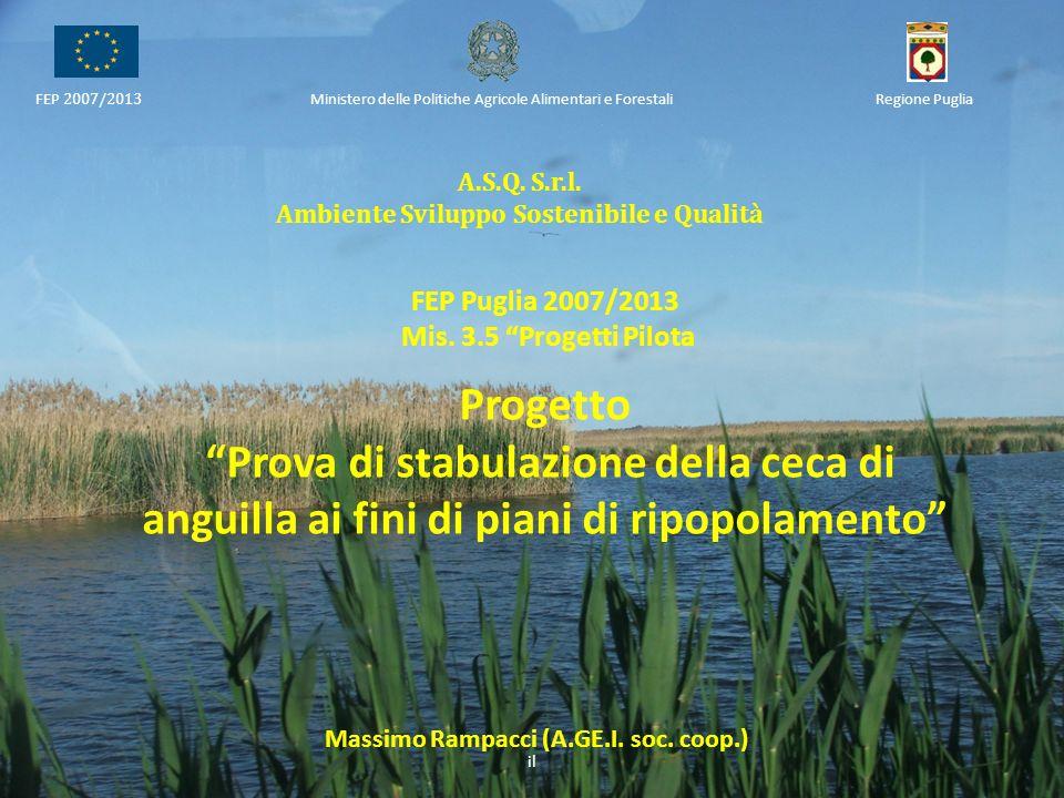 Ambiente Sviluppo Sostenibile e Qualità