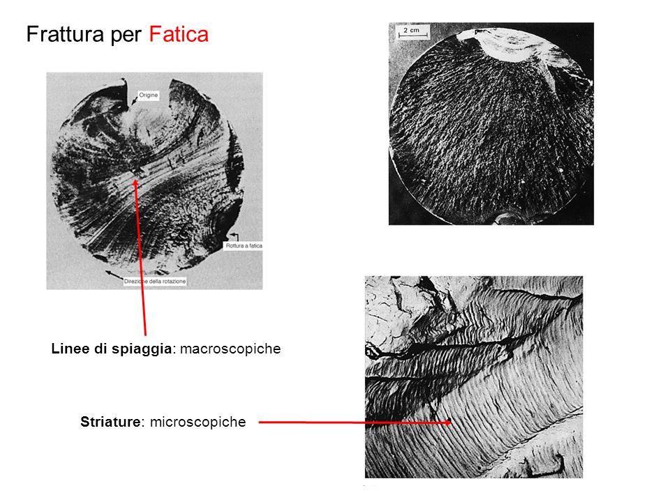 Frattura per Fatica Linee di spiaggia: macroscopiche