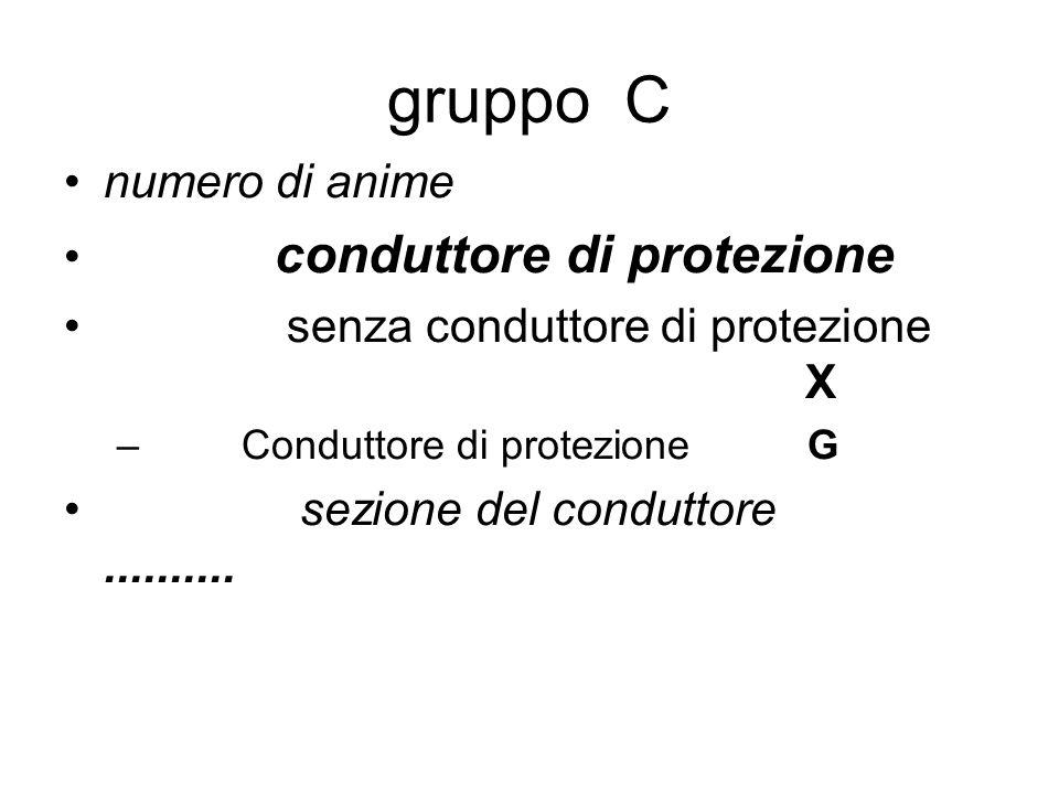 gruppo C numero di anime conduttore di protezione
