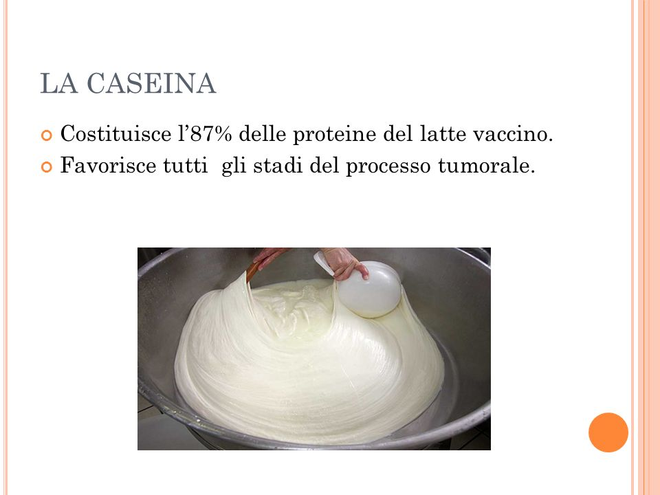 LA CASEINA Costituisce l'87% delle proteine del latte vaccino.