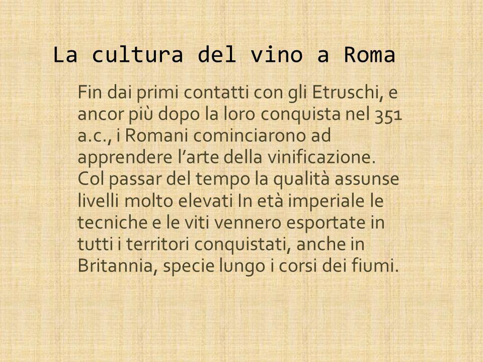 La cultura del vino a Roma
