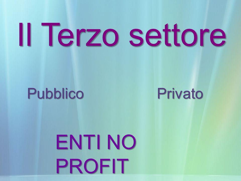 Il Terzo settore Pubblico Privato ENTI NO PROFIT