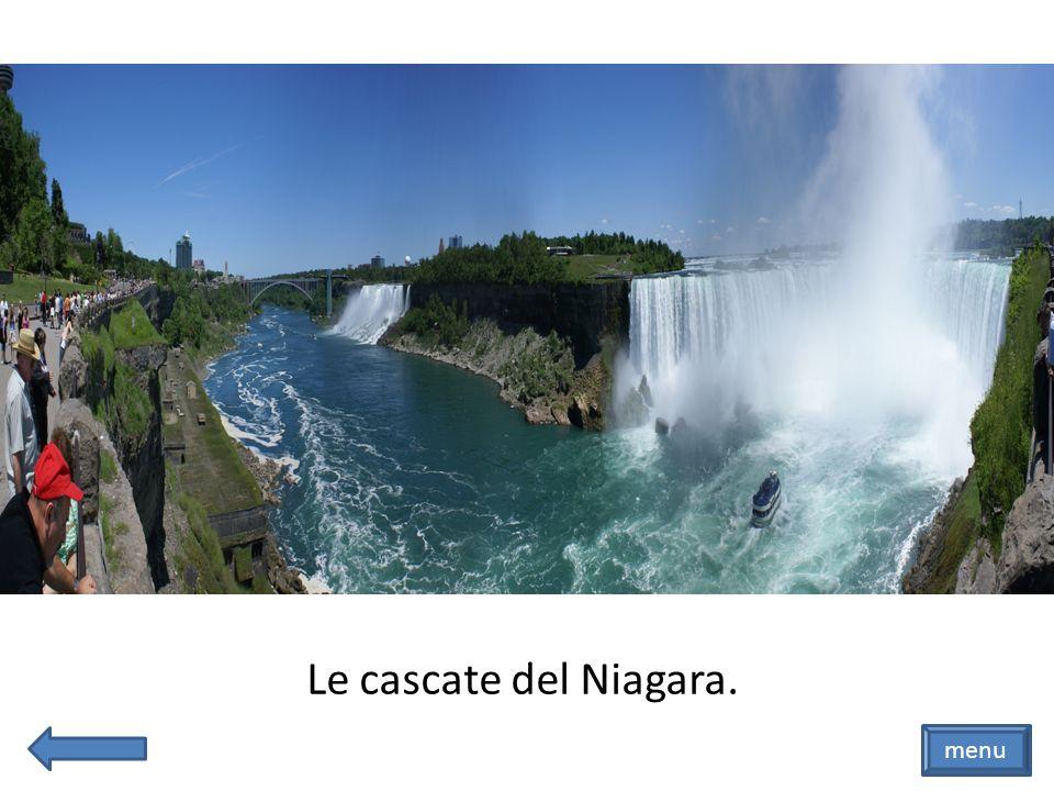 Le cascate del Niagara. menu