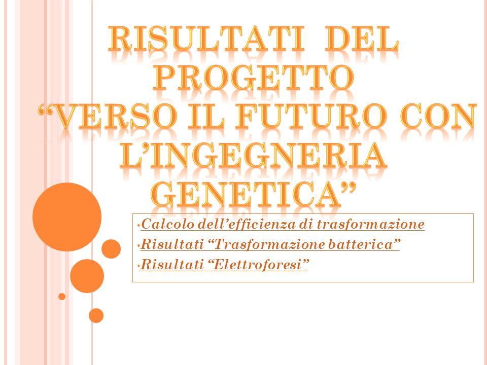 Risultati del Progetto L'ingegneria genetica