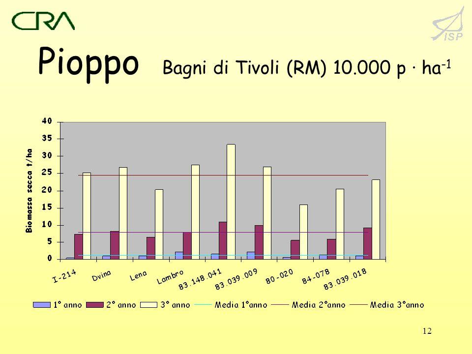 Pioppo Bagni di Tivoli (RM) 10.000 p · ha-1