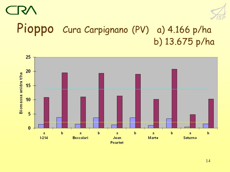Pioppo Cura Carpignano (PV) a) 4.166 p/ha b) 13.675 p/ha
