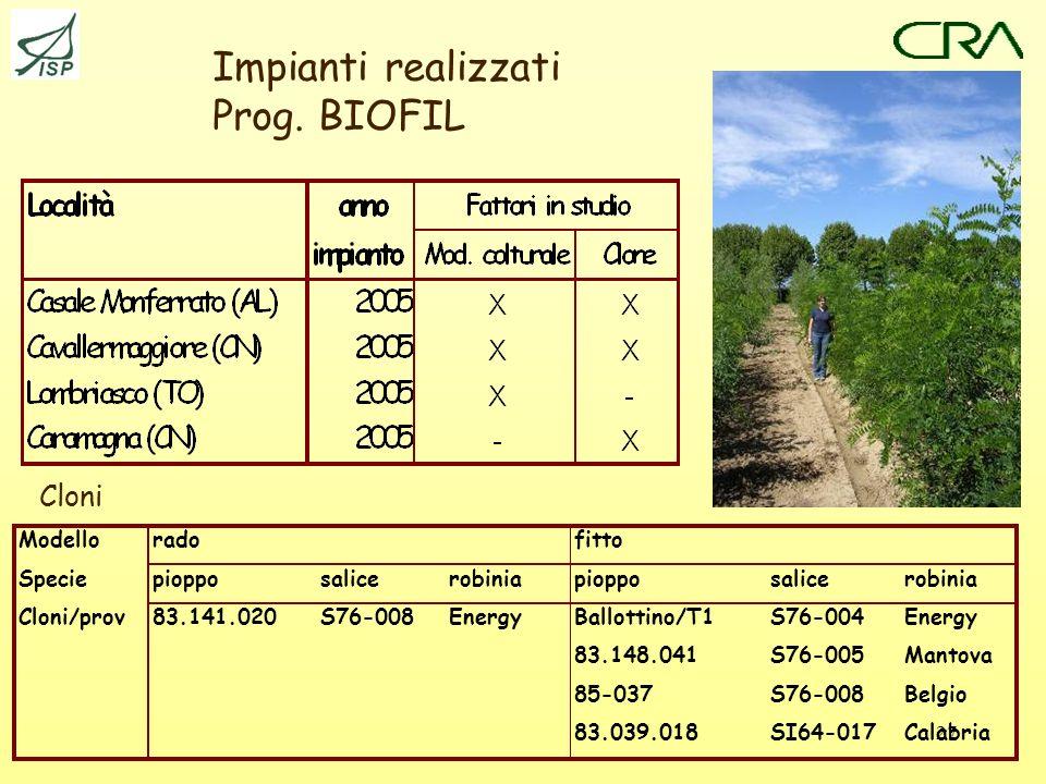 Impianti realizzati Prog. BIOFIL Cloni Modello rado fitto Specie