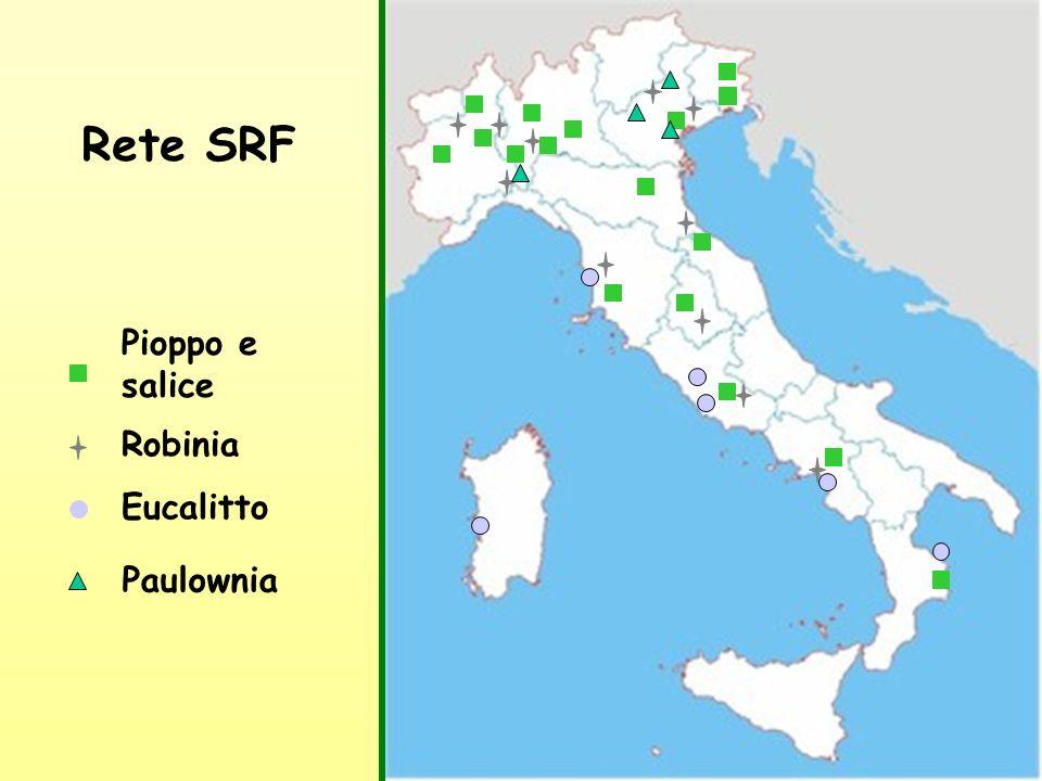 Rete SRF Pioppo e salice Robinia Eucalitto Paulownia