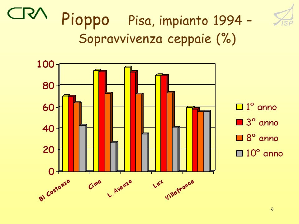 Pioppo Pisa, impianto 1994 – Sopravvivenza ceppaie (%)