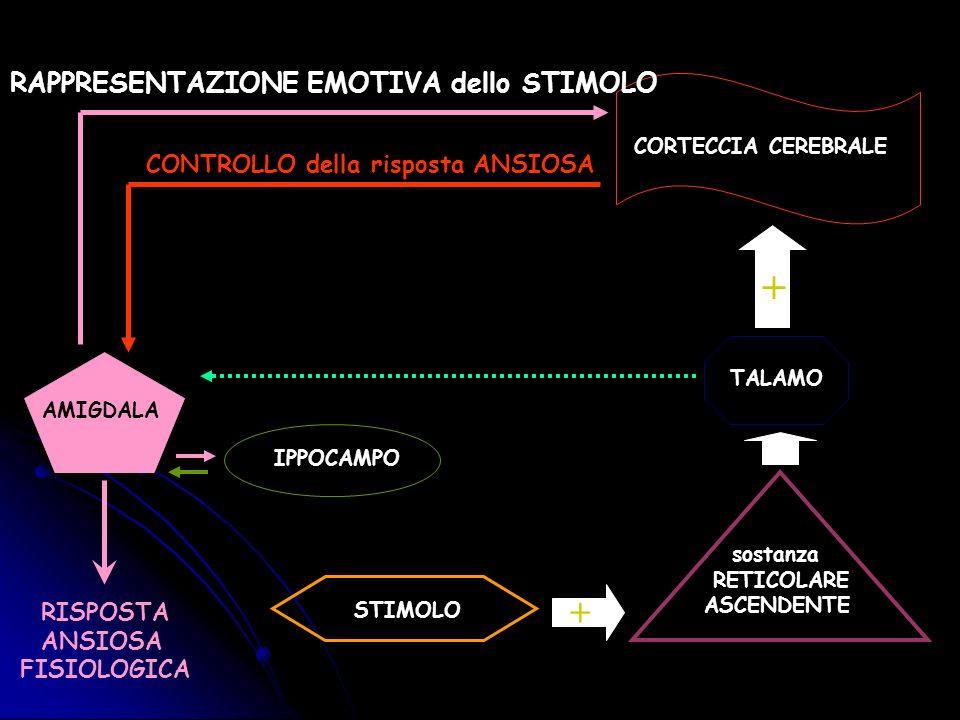 + + RAPPRESENTAZIONE EMOTIVA dello STIMOLO