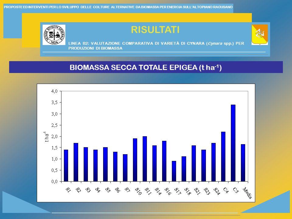 BIOMASSA SECCA TOTALE EPIGEA (t ha-1)