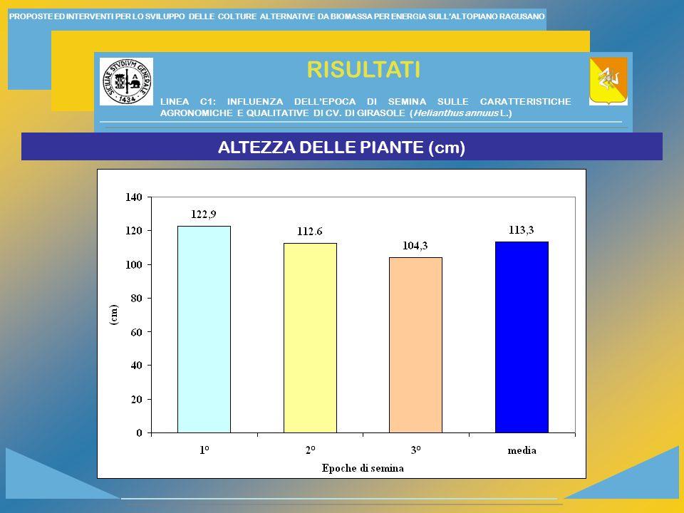ALTEZZA DELLE PIANTE (cm)