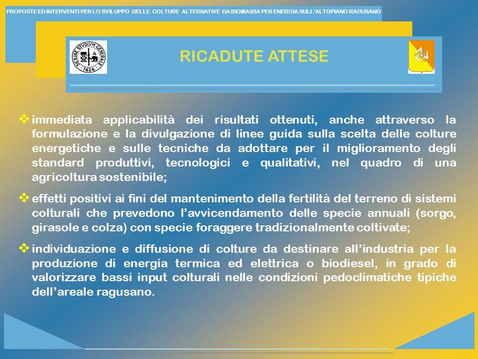 PROPOSTE ED INTERVENTI PER LO SVILUPPO DELLE COLTURE ALTERNATIVE DA BIOMASSA PER ENERGIA SULL'ALTOPIANO RAGUSANO