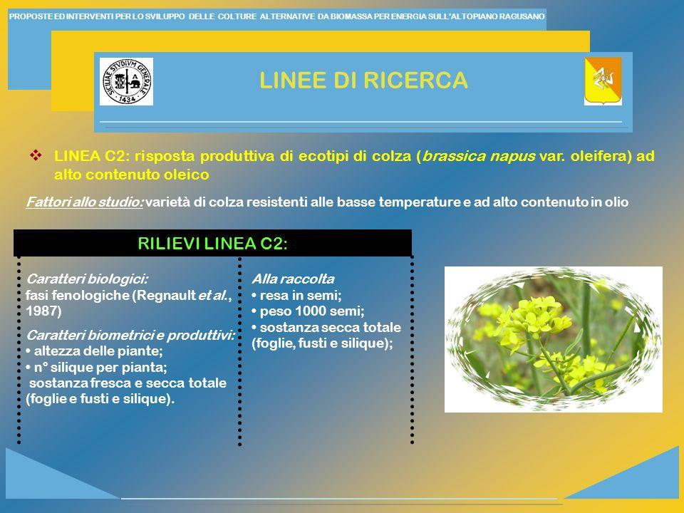 LINEE DI RICERCA RILIEVI LINEA C2: