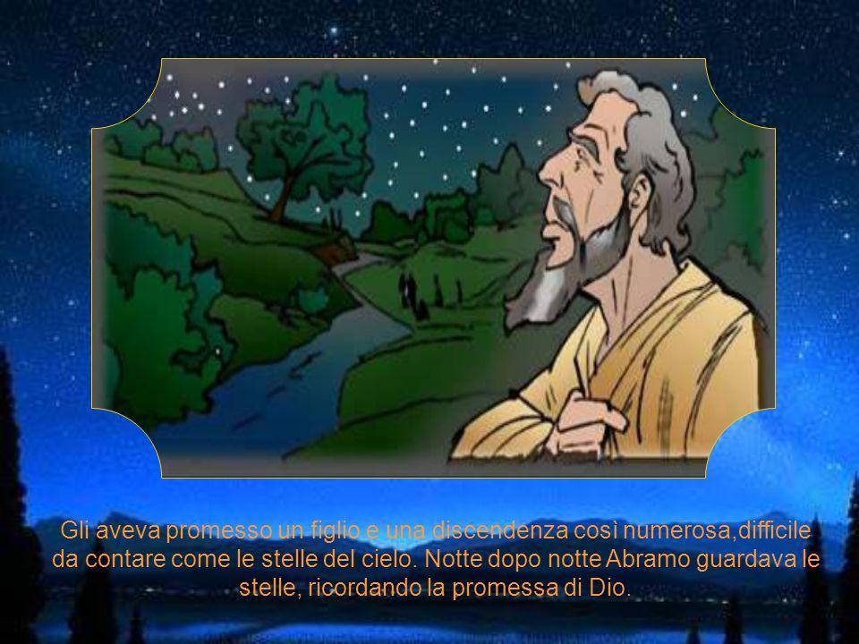 Gli aveva promesso un figlio e una discendenza così numerosa,difficile da contare come le stelle del cielo.