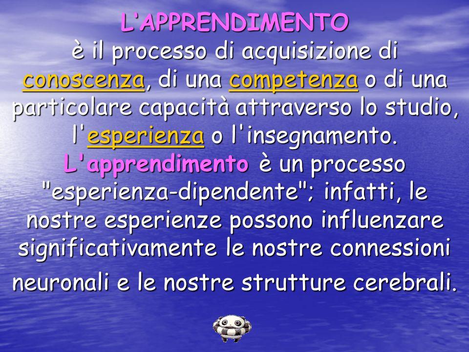 L'APPRENDIMENTO è il processo di acquisizione di conoscenza, di una competenza o di una particolare capacità attraverso lo studio, l esperienza o l insegnamento.