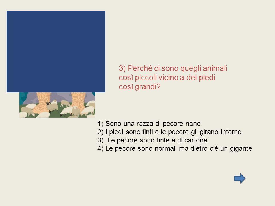 3) Perché ci sono quegli animali così piccoli vicino a dei piedi così grandi