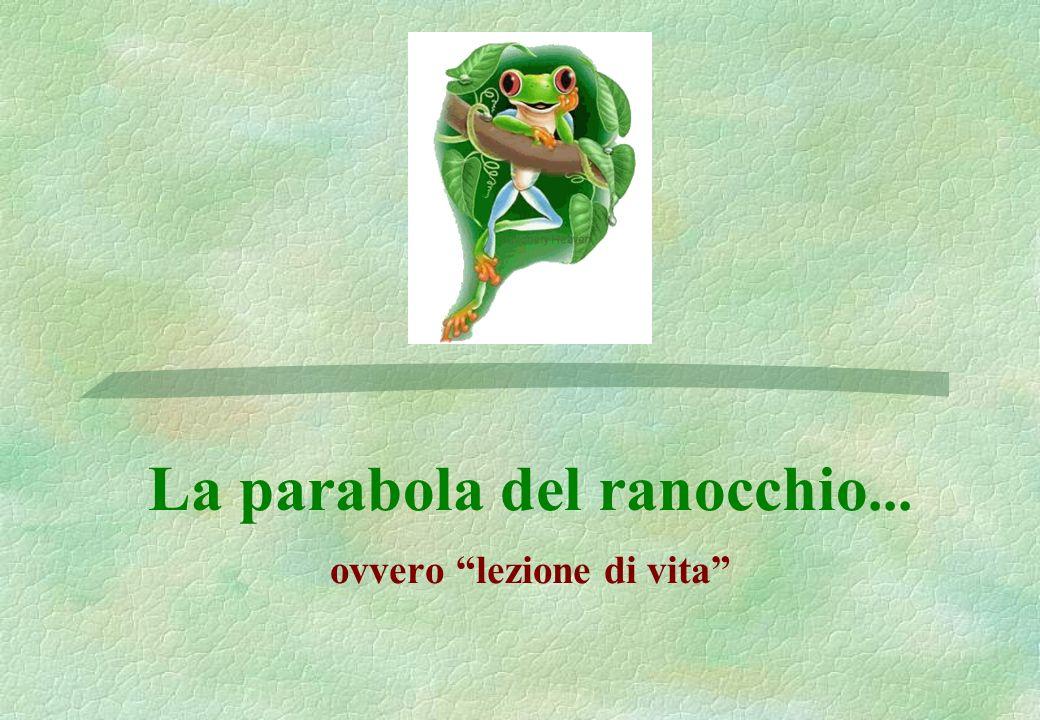 La parabola del ranocchio... ovvero lezione di vita