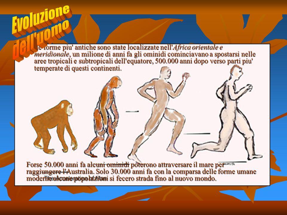 Le forme piu antiche sono state localizzate nell Africa orientale e meridionale, un milione di anni fa gli ominidi cominciavano a spostarsi nelle aree tropicali e subtropicali dell equatore, 500.000 anni dopo verso parti piu temperate di questi continenti.