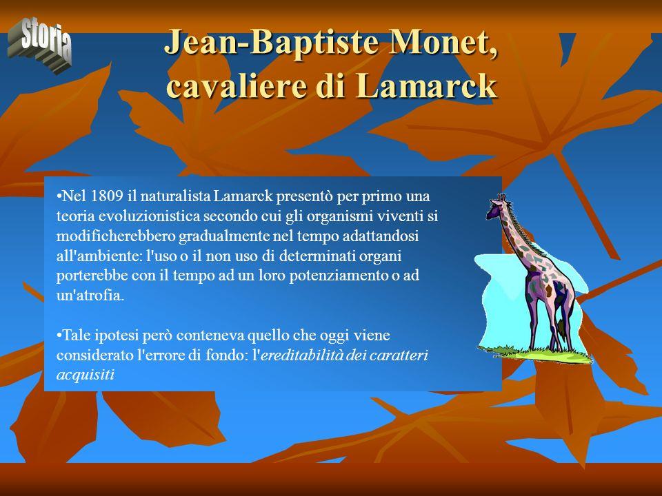 Jean-Baptiste Monet, cavaliere di Lamarck
